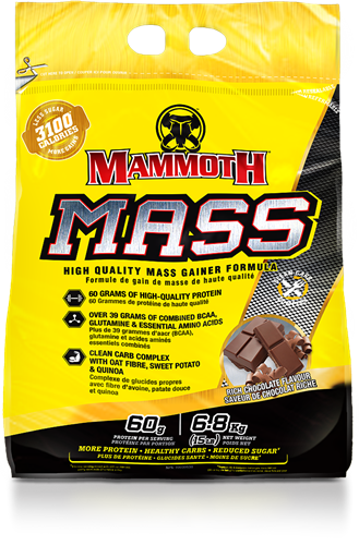 Mammoth Mass Rich Chocolate (6800 gr)