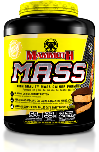 Mammoth Mass Chocolate Peanut Butter (2270 gr)
