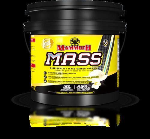 Mammoth Mass Vanilla (4540gr)