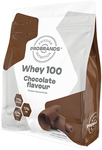 Protein Pro 100% Whey Protein Chocolate (900 gr)